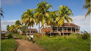 Picture of Patrimónios Tropicais Modernos
