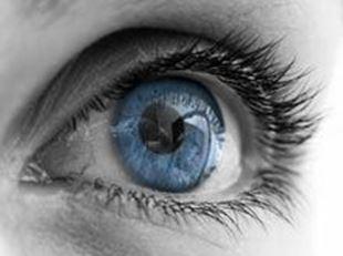 Imagens por categoria Curso de Contactologia Avançada e Superfície Ocular