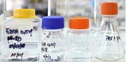 Picture of Fundamentals in Genetics, Development and Neoplasia