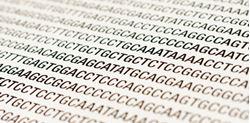 Imagens de Bioinformática nas Ciências da Saúde